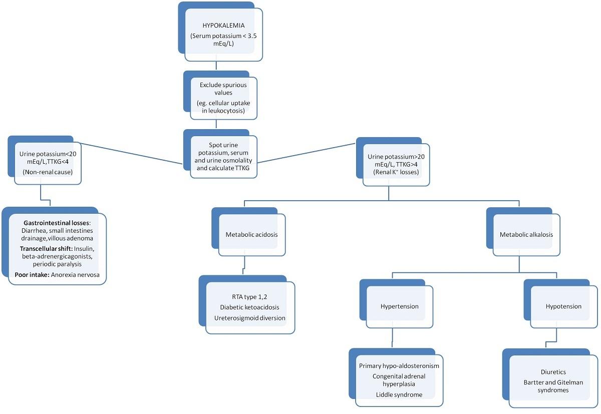 potassium balance vs hypokalemia vs hyperkalemia - medical case, Skeleton